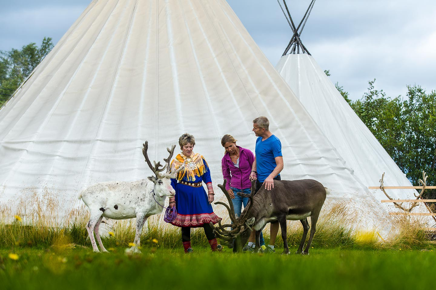 Afbeelding van Vidar Visiting The Sami Reindeer Camp CH VisitNorway