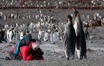Foto Workshop Antarctica Jan Veen Oceanwide Expeditions