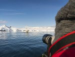 Antarctica-walvis-safari-Oceanwide-Expeditions-14.jpg