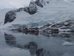 Poolreis-naar-Antarctica-Paradise-Harbour-Hurtigruten-David-Alan-Griffiths.jpg