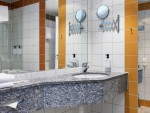 standard_bathroom_1476885551.jpg